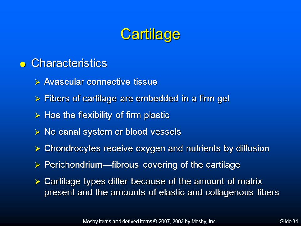 Cartilage Characteristics Avascular connective tissue