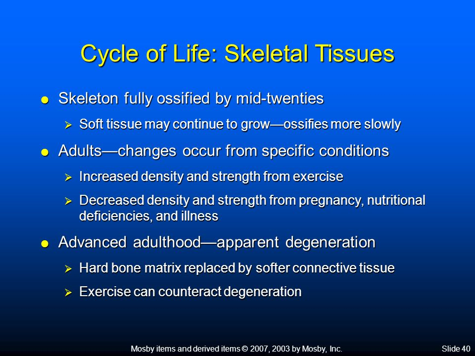 Cycle of Life: Skeletal Tissues