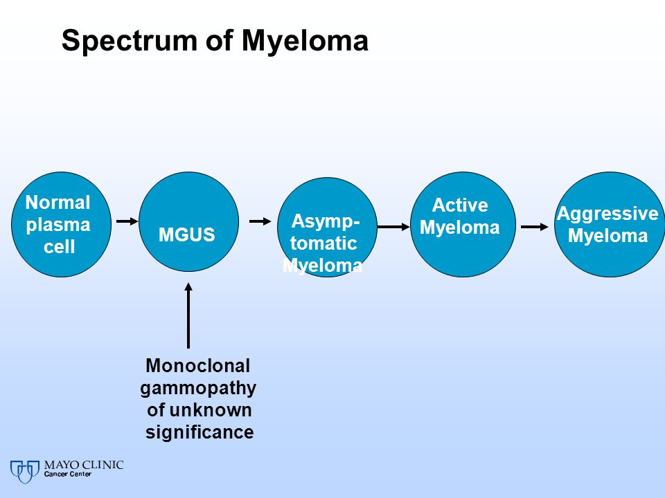 Spectrum of Myeloma Asymp- Normal Active Myeloma Aggressive tomatic