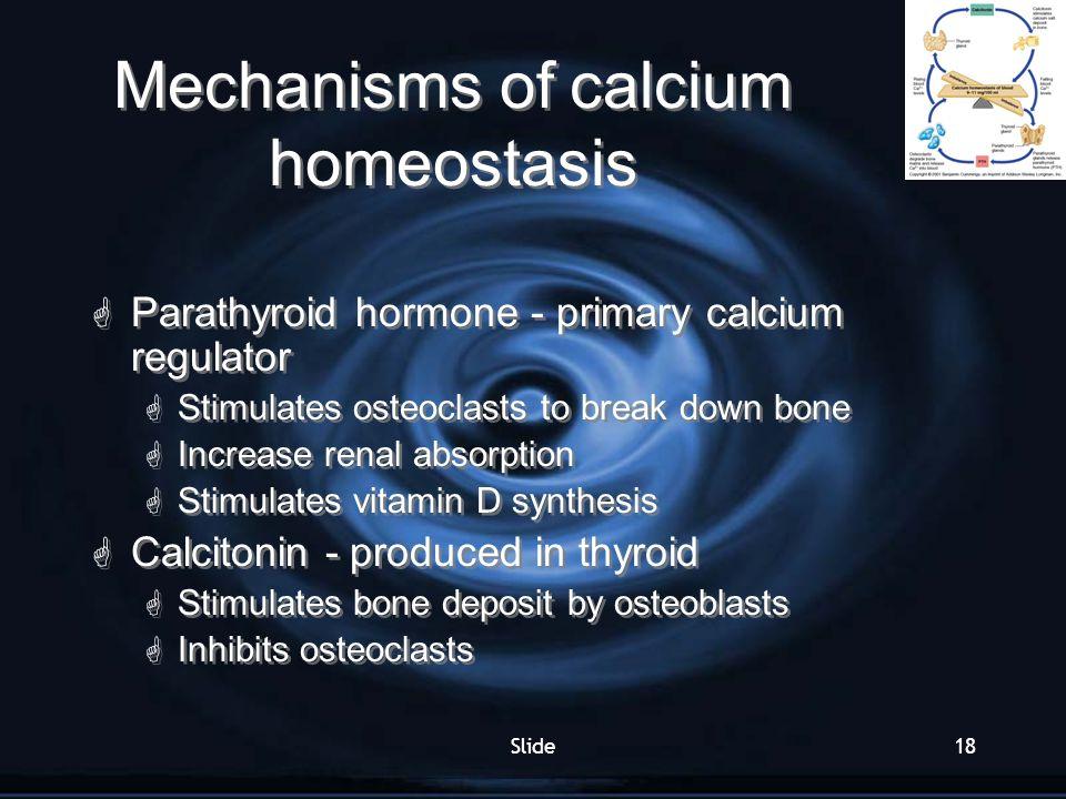 Mechanisms of calcium homeostasis