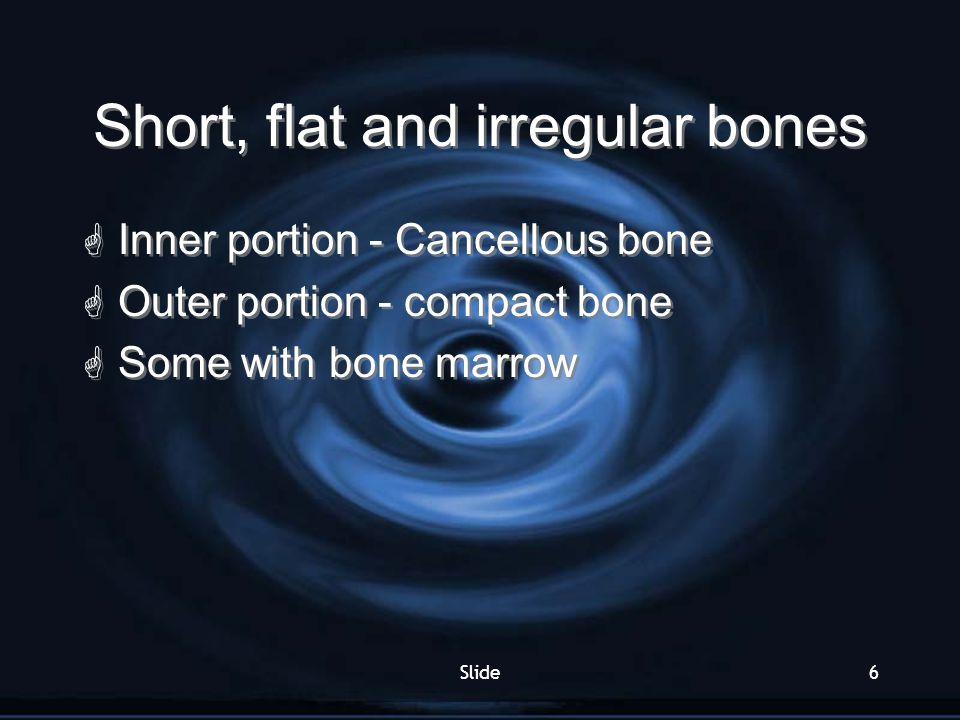 Short, flat and irregular bones
