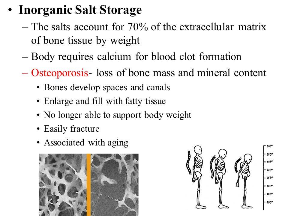 Inorganic Salt Storage