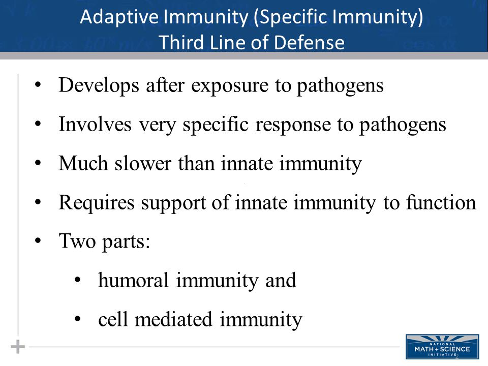 Adaptive Immunity (Specific Immunity) Third Line of Defense