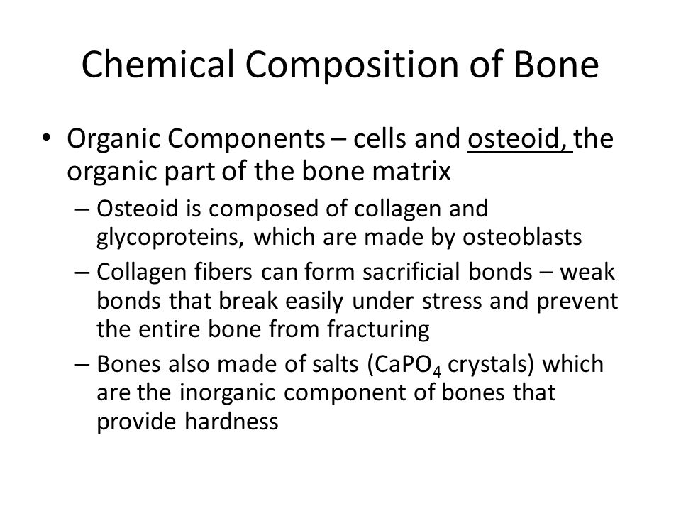 Chemical Composition of Bone