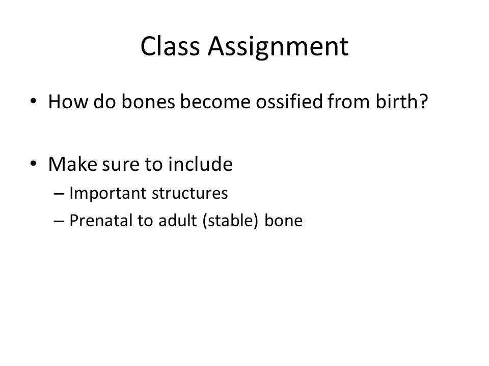 Class Assignment How do bones become ossified from birth