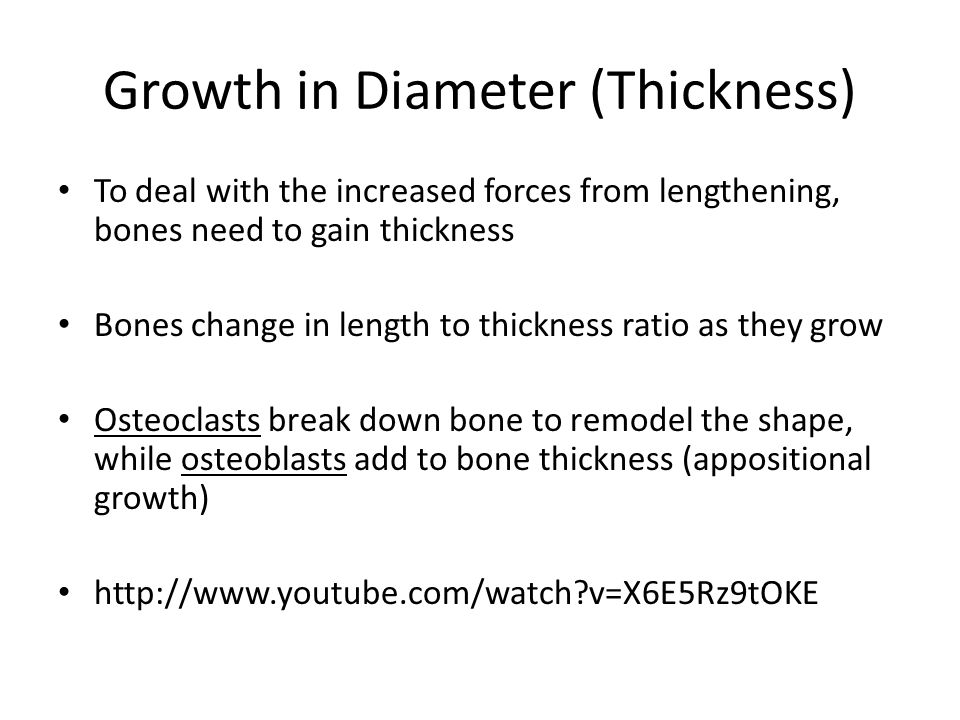 Growth in Diameter (Thickness)