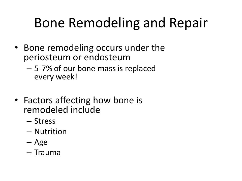 Bone Remodeling and Repair