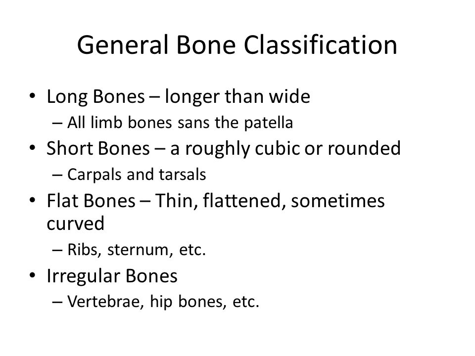 General Bone Classification