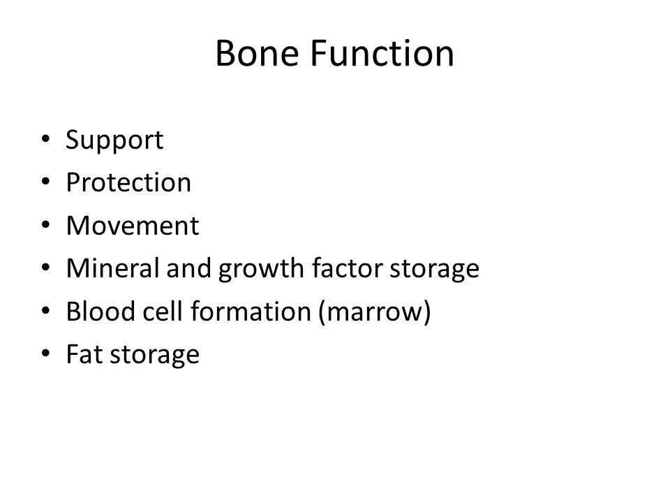 Bone Function Support Protection Movement