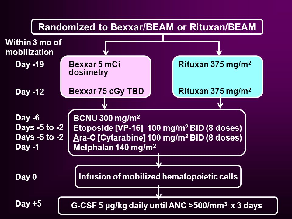 Randomized to Bexxar/BEAM or Rituxan/BEAM