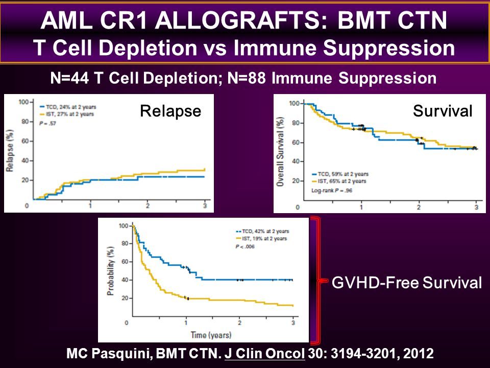 AML CR1 ALLOGRAFTS: BMT CTN T Cell Depletion vs Immune Suppression