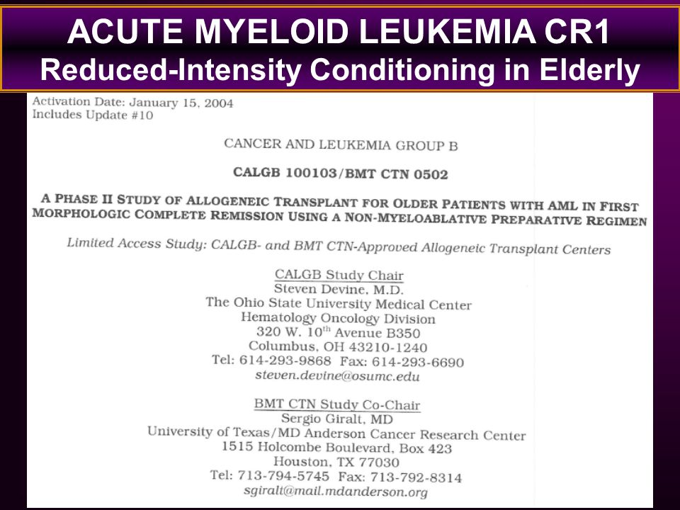 ACUTE MYELOID LEUKEMIA CR1 Reduced-Intensity Conditioning in Elderly
