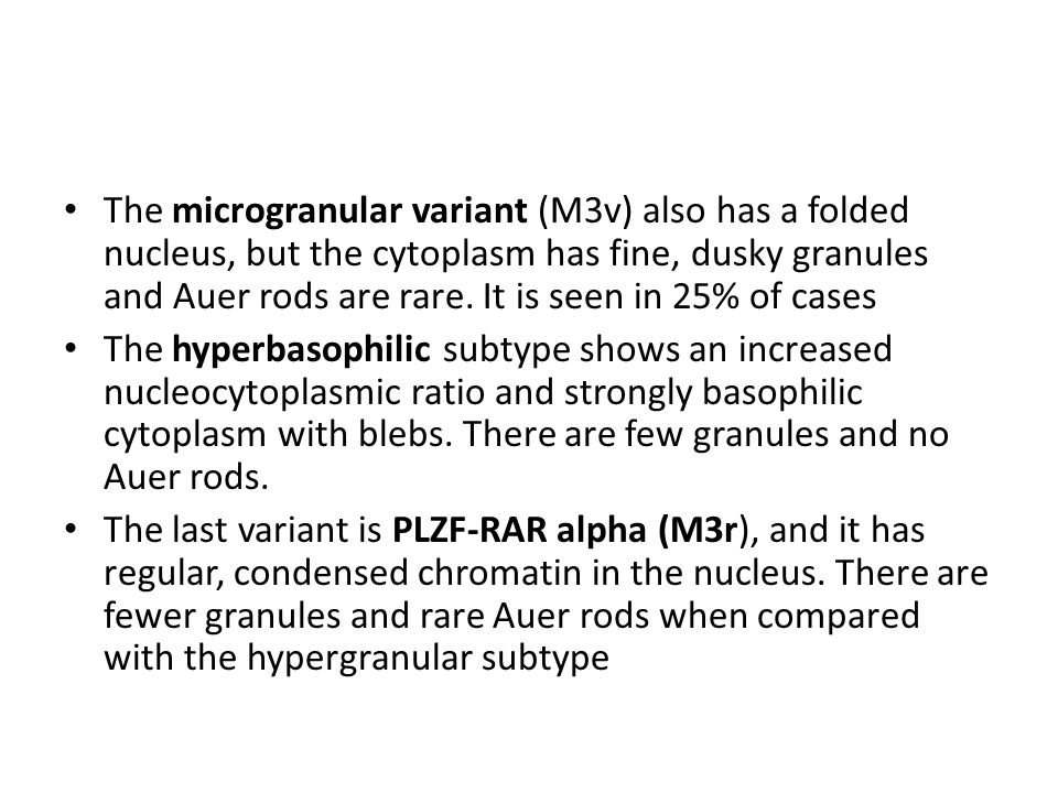The microgranular variant (M3v) also has a folded nucleus, but the cytoplasm has fine, dusky granules and Auer rods are rare. It is seen in 25% of cases
