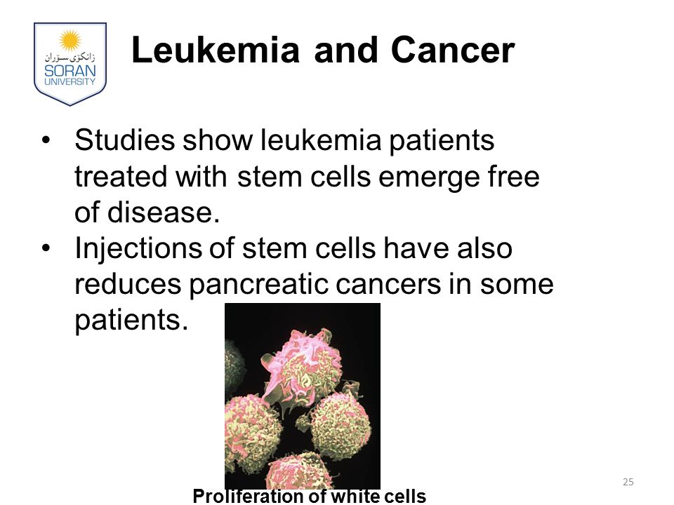 Leukemia and Cancer Studies show leukemia patients treated with stem cells emerge free of disease.