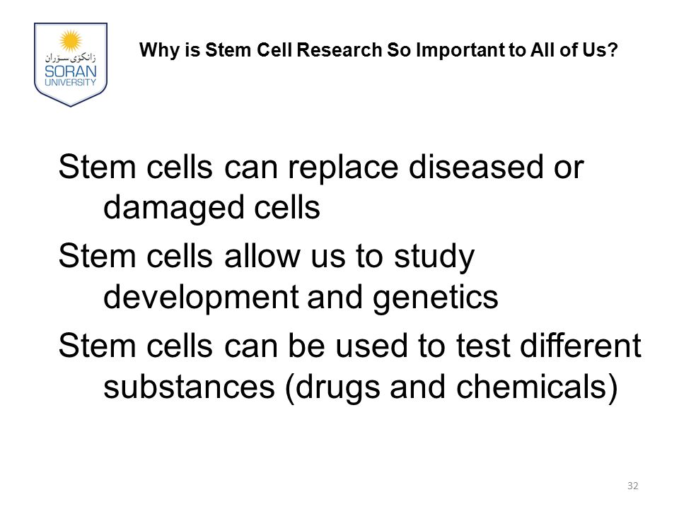 Why is Stem Cell Research So Important to All of Us