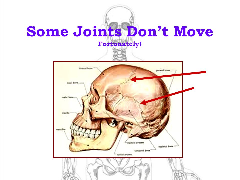 Some Joints Don't Move Fortunately!