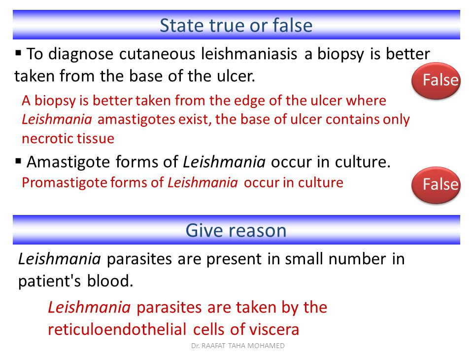 State true or false Give reason