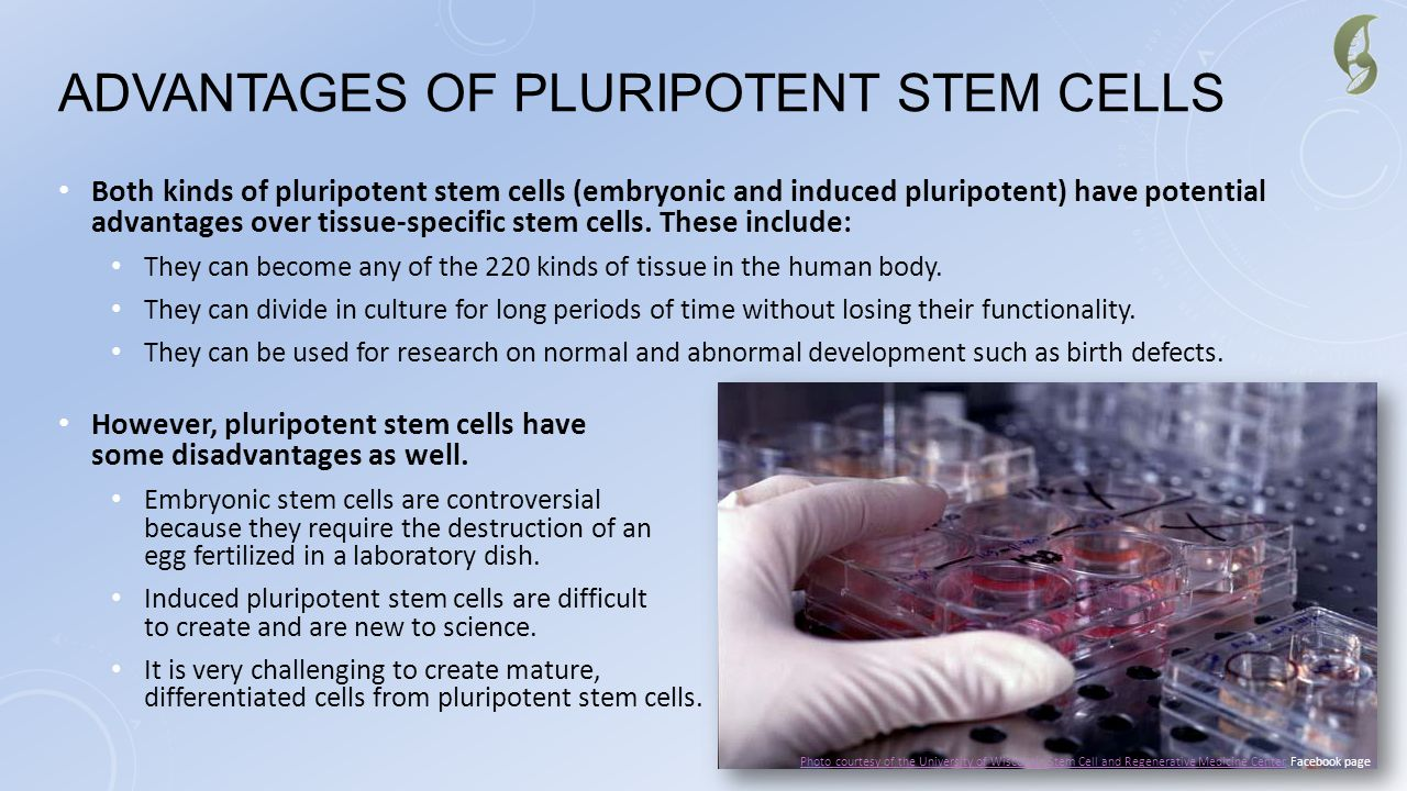 Advantages of Pluripotent Stem Cells
