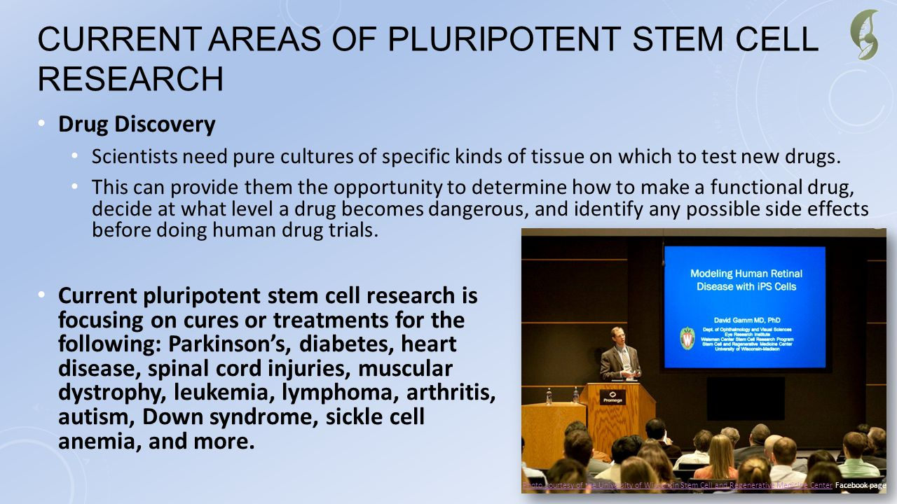 Current Areas of Pluripotent Stem Cell Research