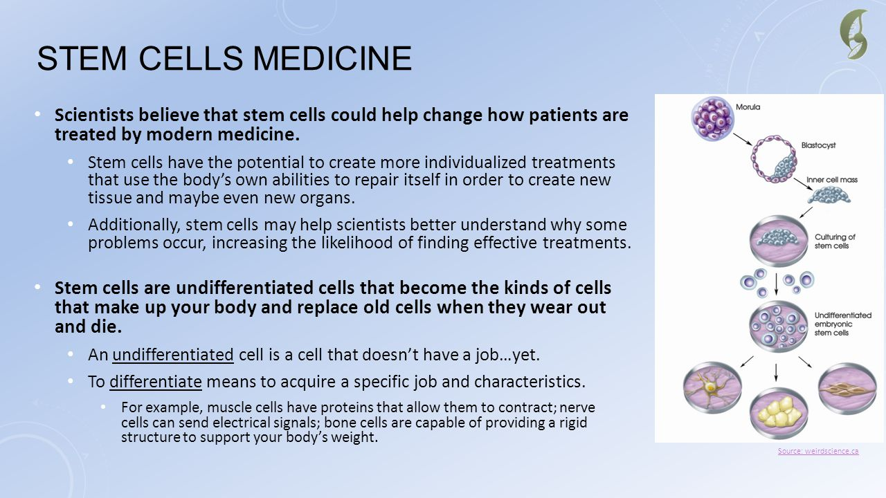 Stem Cells Medicine Scientists believe that stem cells could help change how patients are treated by modern medicine.