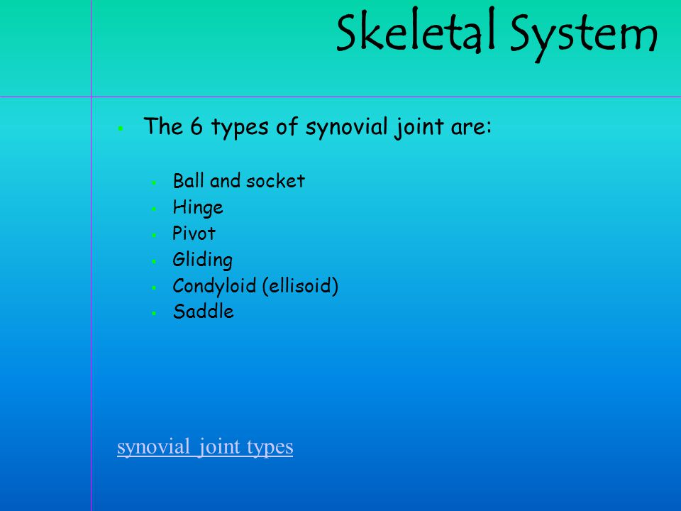 Skeletal System The 6 types of synovial joint are:
