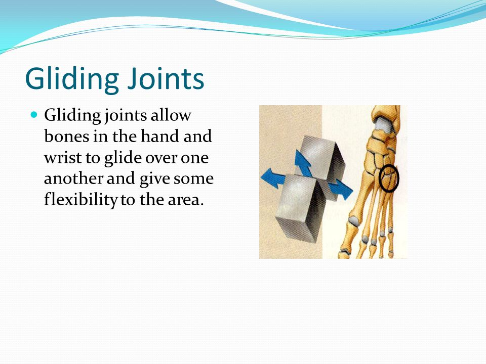 Gliding Joints Gliding joints allow bones in the hand and wrist to glide over one another and give some flexibility to the area.