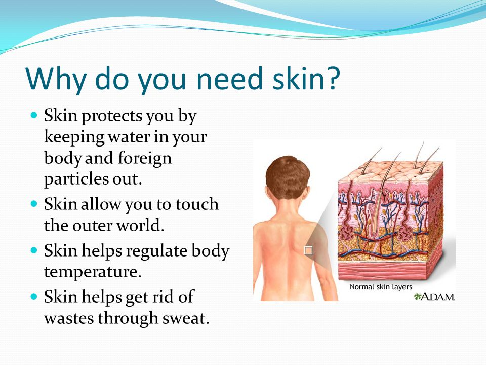 Why do you need skin Skin protects you by keeping water in your body and foreign particles out. Skin allow you to touch the outer world.