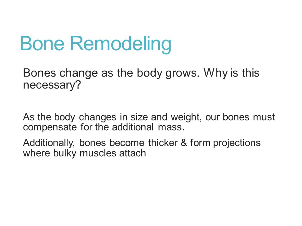 Bone Remodeling Bones change as the body grows. Why is this necessary