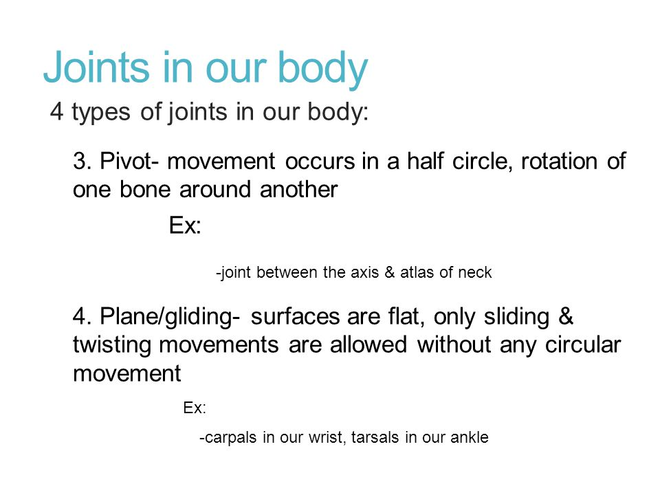 Joints in our body 4 types of joints in our body:
