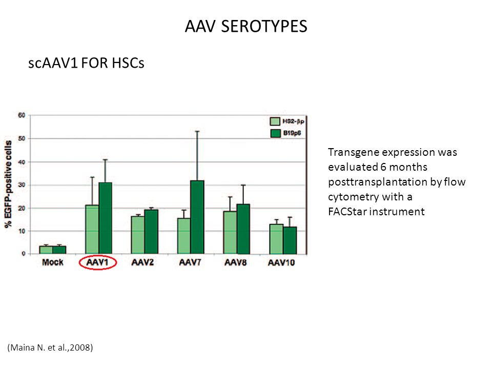 AAV SEROTYPES scAAV1 FOR HSCs