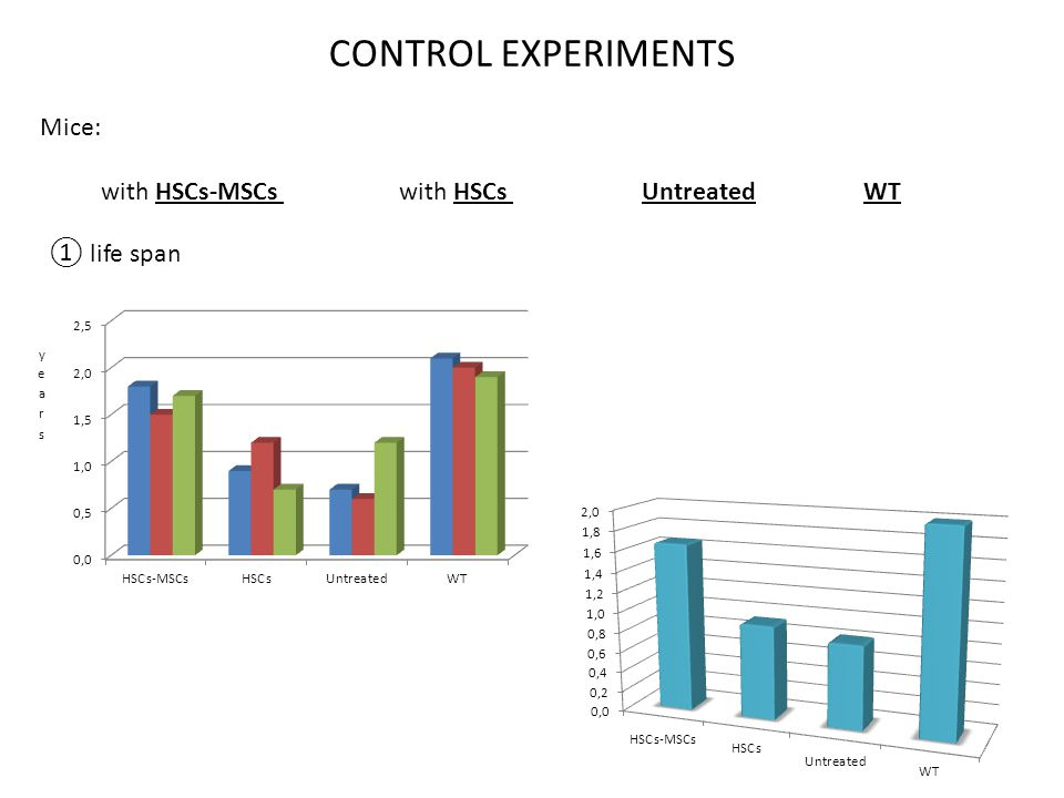 CONTROL EXPERIMENTS Mice: with HSCs-MSCs with HSCs Untreated WT