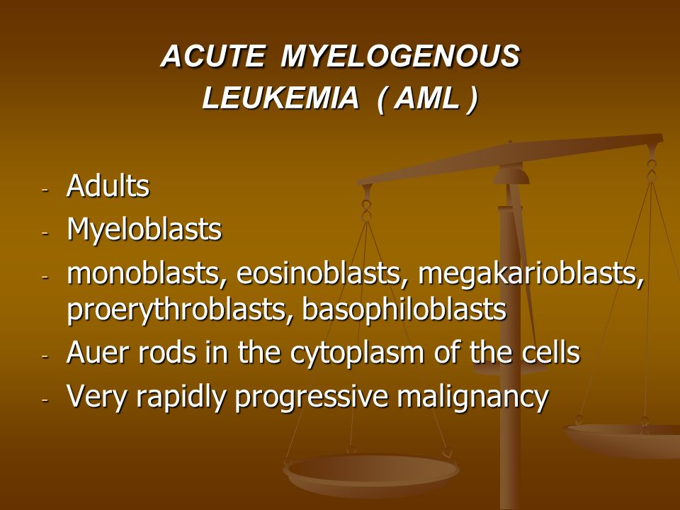 ACUTE MYELOGENOUS LEUKEMIA ( AML )