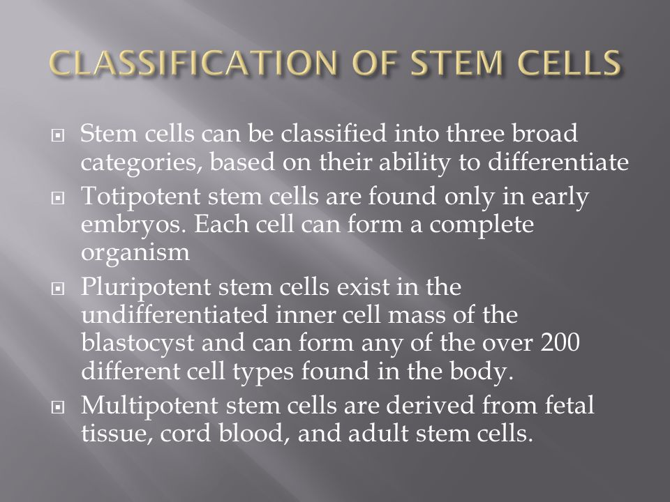 CLASSIFICATION OF STEM CELLS