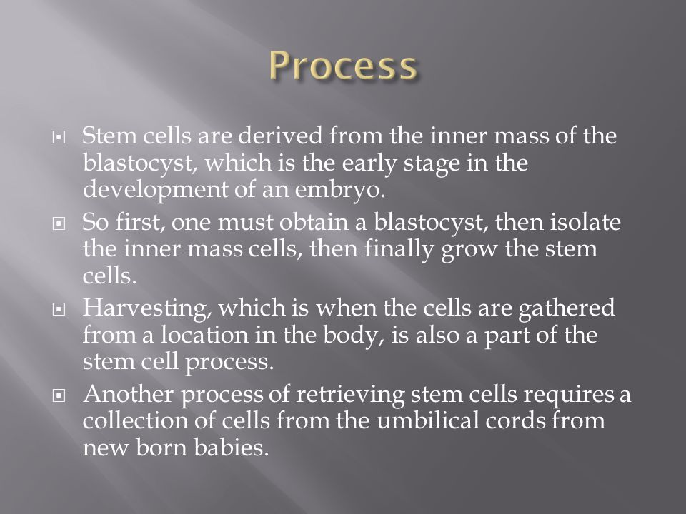 Process Stem cells are derived from the inner mass of the blastocyst, which is the early stage in the development of an embryo.