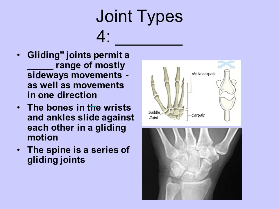 Joint Types 4: _______ Gliding joints permit a _____ range of mostly sideways movements - as well as movements in one direction.