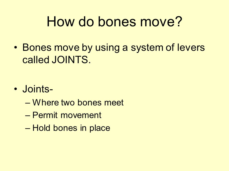 How do bones move Bones move by using a system of levers called JOINTS. Joints- Where two bones meet.