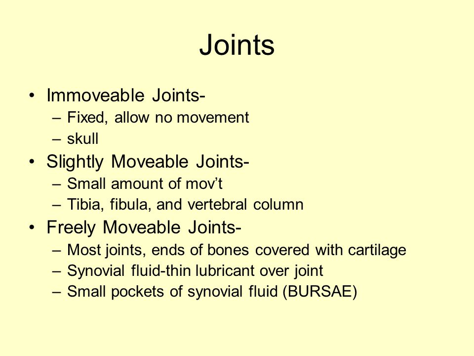 Joints Immoveable Joints- Slightly Moveable Joints-