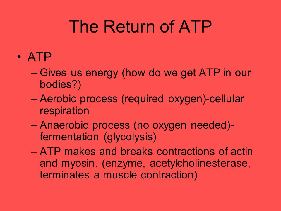 The Return of ATP ATP. Gives us energy (how do we get ATP in our bodies ) Aerobic process (required oxygen)-cellular respiration.
