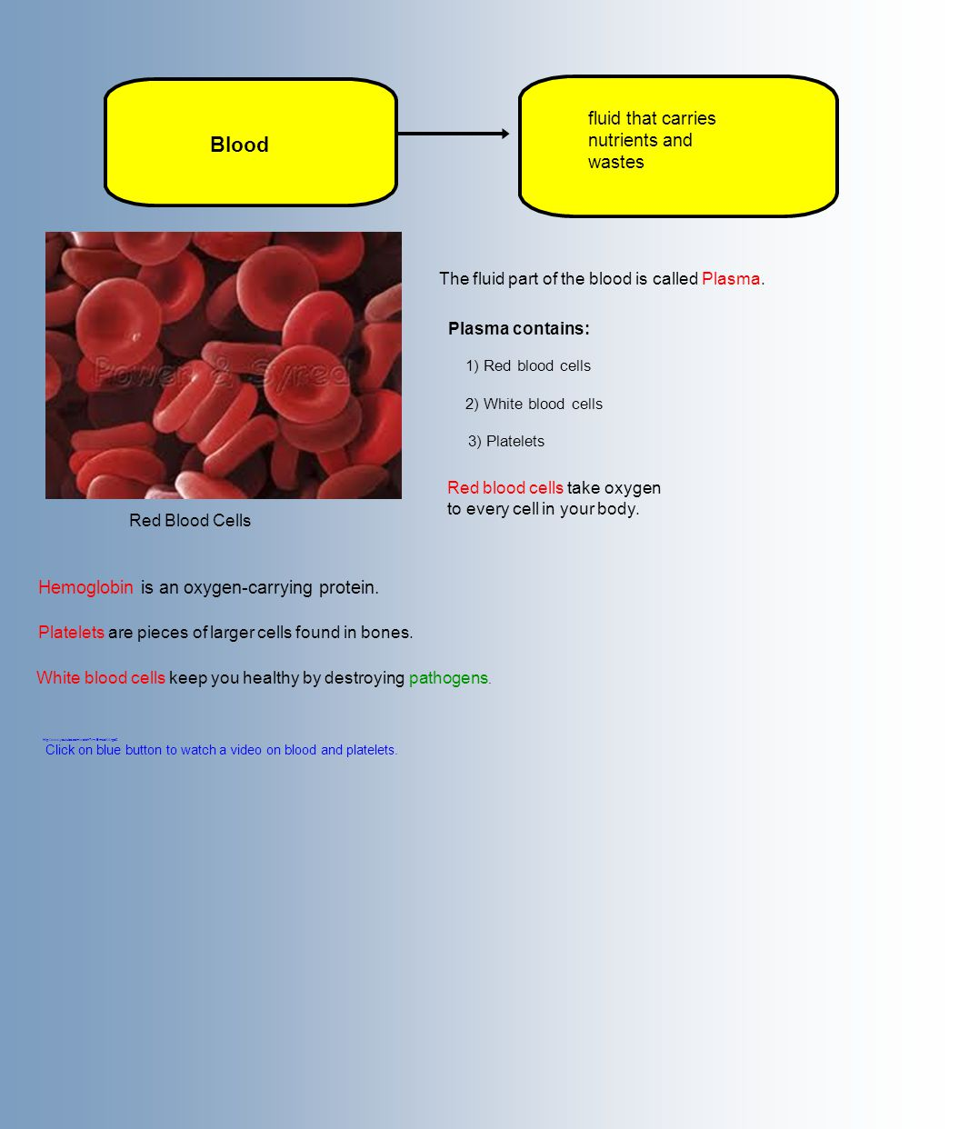 Blood fluid that carries nutrients and wastes