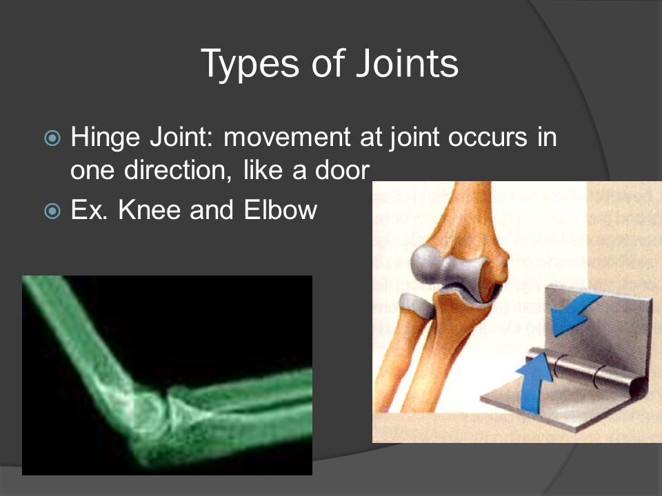 Types of Joints Hinge Joint: movement at joint occurs in one direction, like a door.
