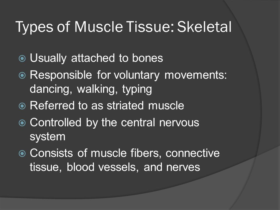 Types of Muscle Tissue: Skeletal