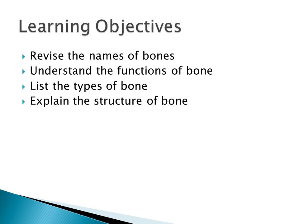 Learning Objectives Revise the names of bones