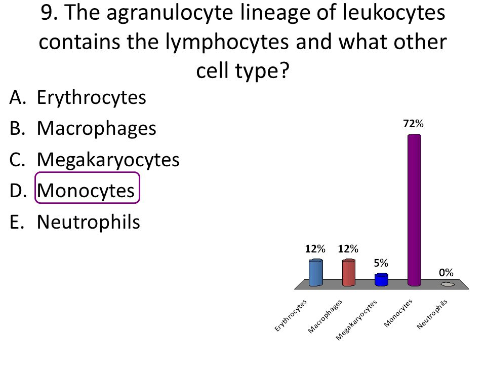 9. The agranulocyte lineage of leukocytes contains the lymphocytes and what other cell type