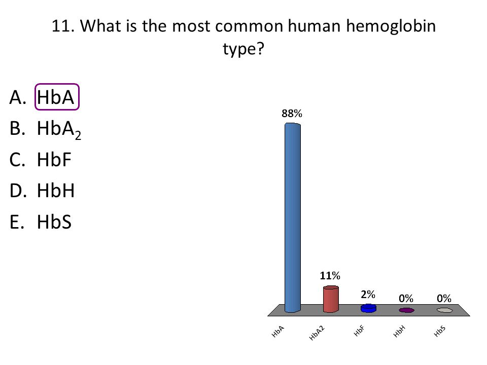 11. What is the most common human hemoglobin type