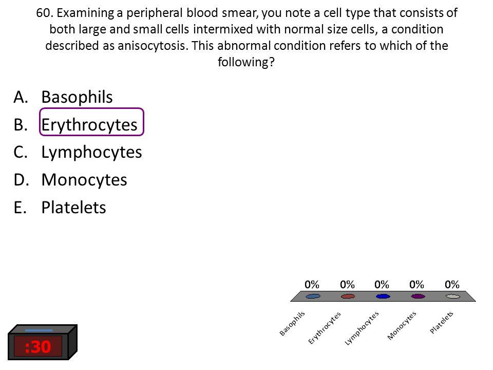 Basophils Erythrocytes Lymphocytes Monocytes Platelets :30