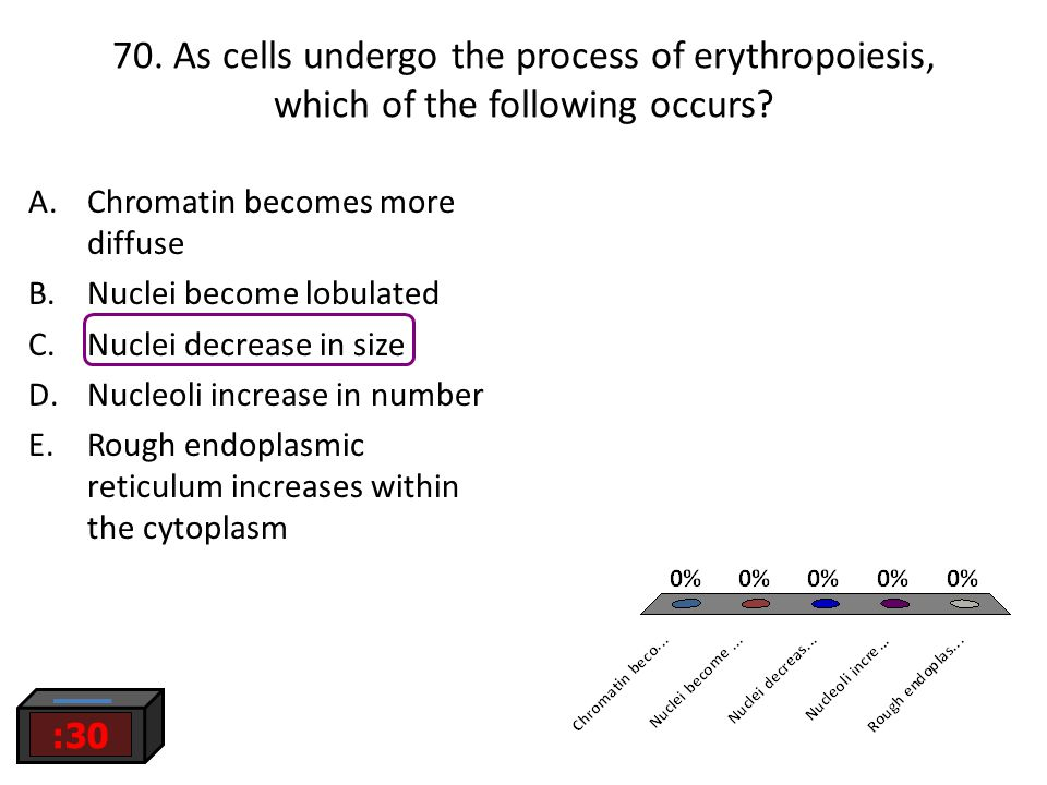 70. As cells undergo the process of erythropoiesis, which of the following occurs