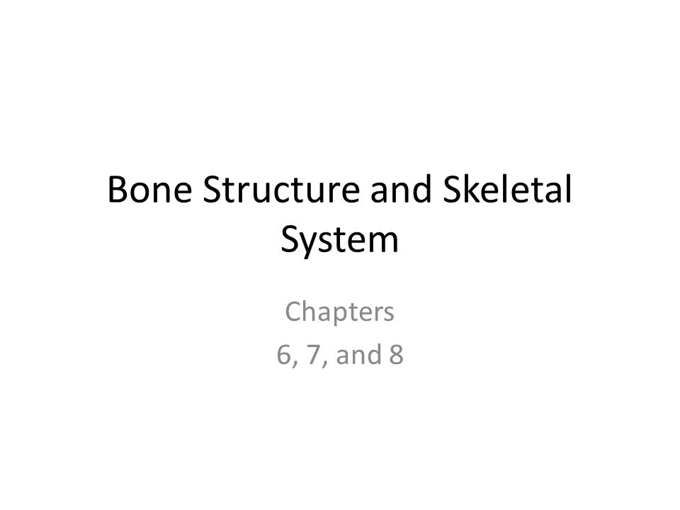 Bone Structure and Skeletal System