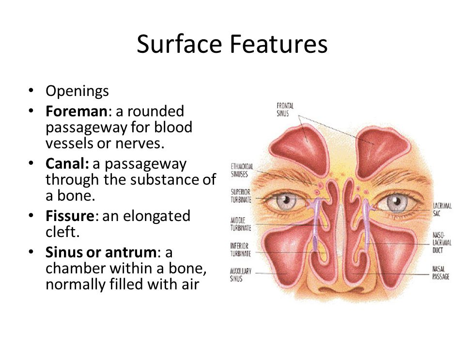 Surface Features Openings