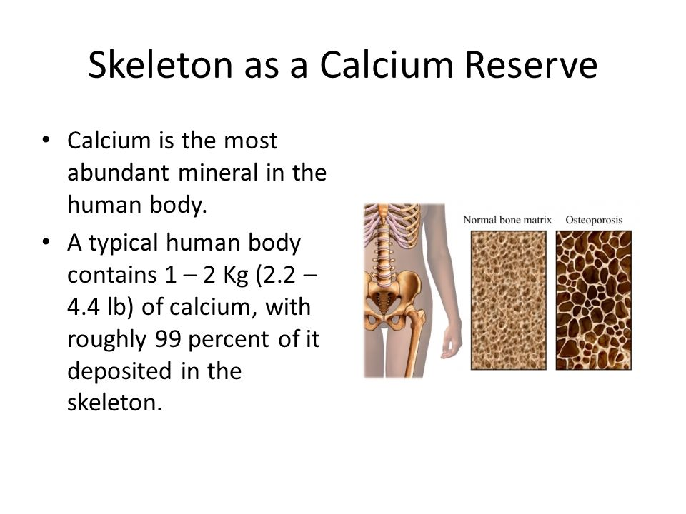 Skeleton as a Calcium Reserve