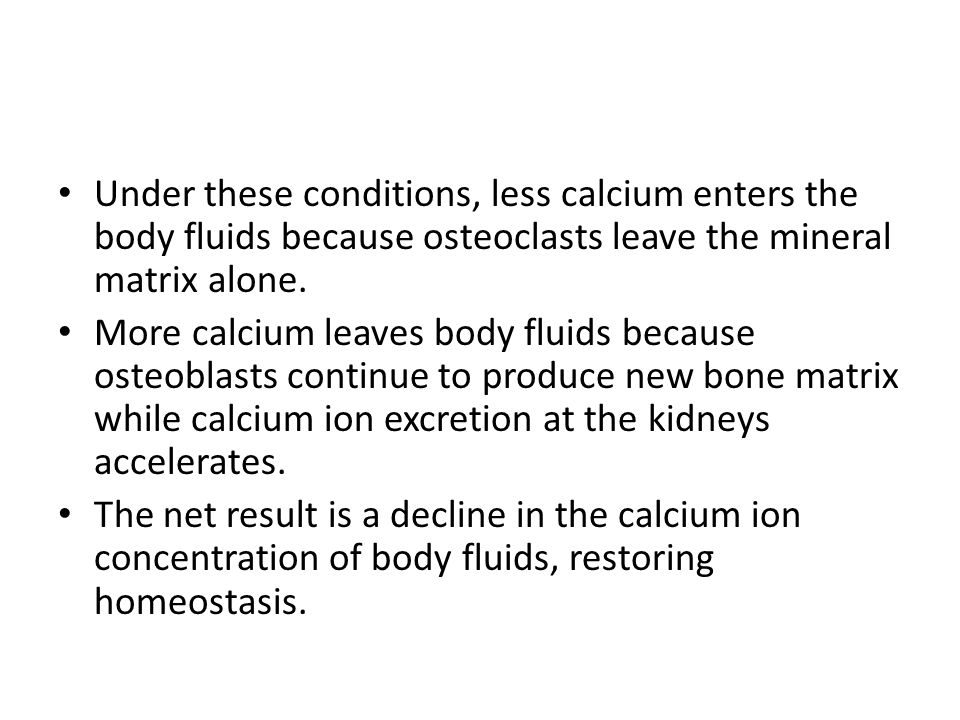 Under these conditions, less calcium enters the body fluids because osteoclasts leave the mineral matrix alone.